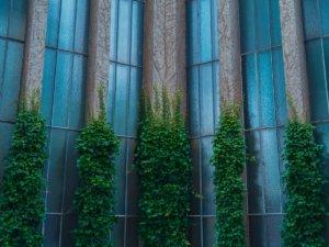 4 pillars of seo